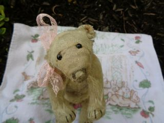 Rare C.  1909 Antique Steiff Polar Bear Mishka