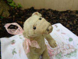 RARE c.  1909 Antique Steiff Polar Bear Mishka 3