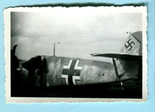 Orig 1944 Wwii Snapshot Shot Down German Me - 109 Southern France