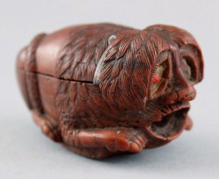 18thc Antique English Carved Wood Character Snuffbox Dog W/ Human Face & Snake