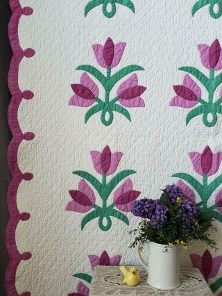 Densely Quilted Vintage 30s Purple Triple Tulip Applique Quilt 84x67 ""