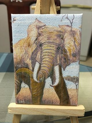 Aceo Hand Painting Oil Painting On Canvas - Elephant By Chi Lok