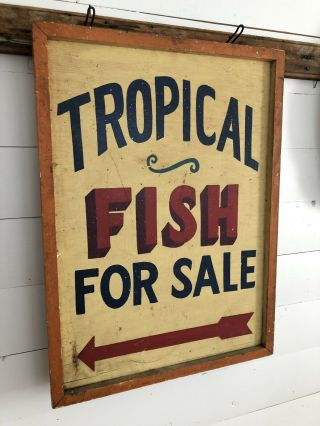 Rare Antique 1940s Orig 2 Sided Tropical Fish Trade Sign Painted Aafa Folk Art