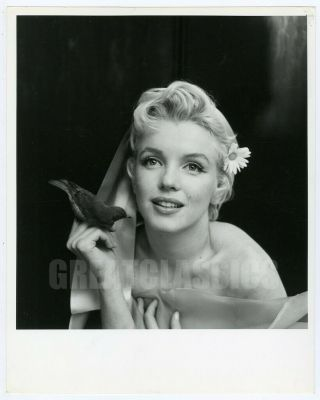 Marilyn Monroe By Cecil Beaton 1956 Breathtaking Vintage Photograph