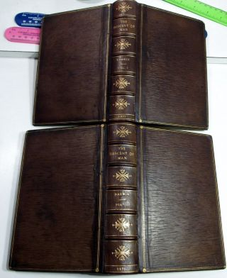 Charles Darwin The Descent Of Man/rare 1st Ed.  /1871/ 2 Volumes Fine Leather Bind