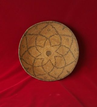 Antique Apache Basket Tray Southwest Native American Indian (7)