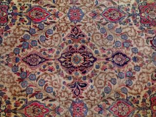 EXTRA LARGE Vintage Handknotted Floral PERSIAN Wool Rug 12x9ft Oriental Keshan 3