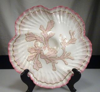 1883 Tiffany & Co Brownfields China Pink Oyster Plate - 56960