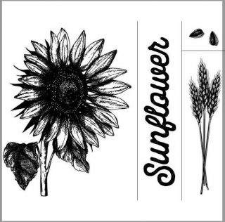 """, Retired,  Extremely Rare,  Vhtf Chalk Couture """" Sunflower """" Transfer/stencil"""