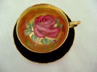 Vintage Paragon Dark Pink Cabbage Rose Footed Cup & Saucer Gold Background