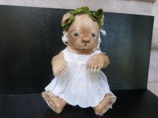 R.  John Wright Toddler Bear Ivy Signed Tag Rare Adorable Teddy Limited Edition