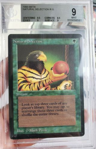 Vintage Magic | Mtg Bgs 9 Beta Natural Selection,  W/9.  5 Sub,