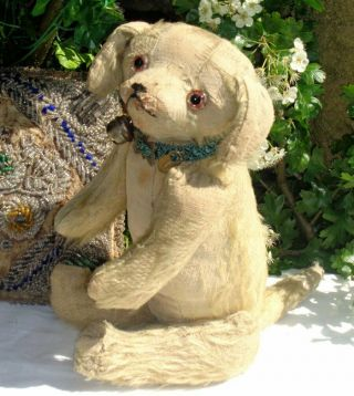 "Extremely Rare Antique C1905 5 Way Jointed Mohair Teddy Bear Dog 14.  5 "" German?"