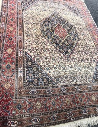 Vintage Traditional Unique Oriental Area Rug Hand - Knotted Wool Multi Carpet 9x9