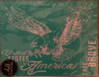Extremely Rare United States Of America Usa Eagle Chalk Couture Transfer