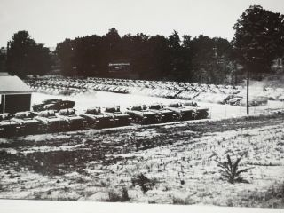 """Wwii Hundreds Of Shermans Tanks Before Deployment 1943 B&w 4 """" X 6.  25 """""""